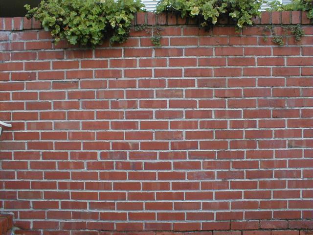 The metaphorical Brick Wall