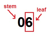 stem and leaf 2