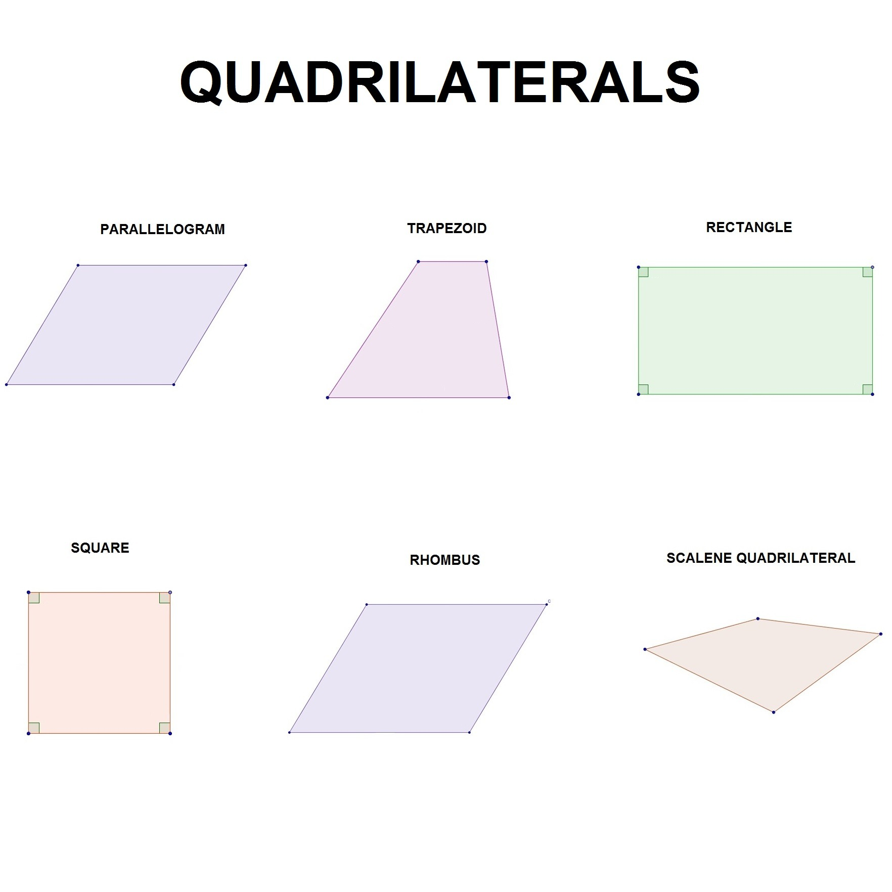Worksheet Types Of Quadrilaterals Worksheet Grass Fedjp Worksheet Study Site