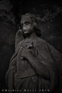 Cimitero Olsany - Angelo - Praga 2016