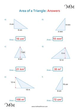 area of a triangle worksheet answers pdf