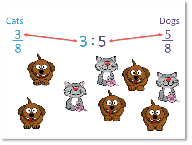 comparing ratio and fractions of amounts of dogs and cats