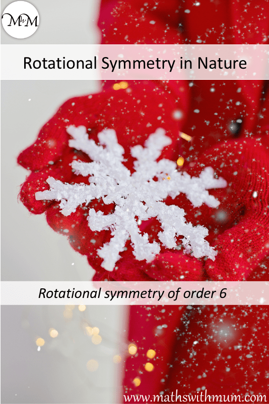 snowflake example of rotational symmetry found in nature