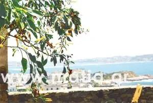 naxos 12 - Νάξος - Κυκλάδες - Αιγαίο - Ελλάδα