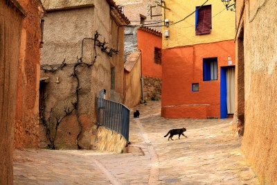 γάτα, παλιά πόλη