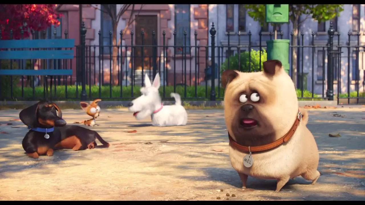 The Secret Life of Pets - Μπάτε Σκύλοι Αλέστε - Ζωάκια Μόνα Στο Σπίτι - 2016