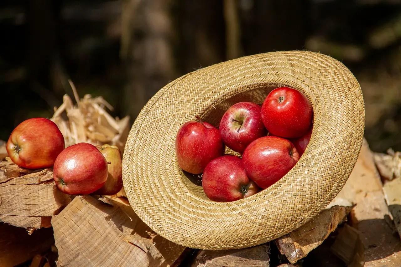 Μήλα κόκκινα, της Ελένης