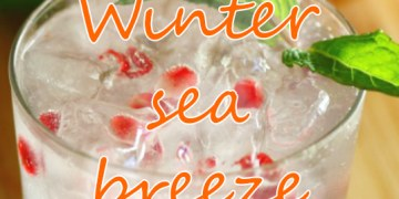 Winter sea breeze (holiday cocktail)