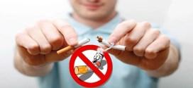 Cigarette - ACTA