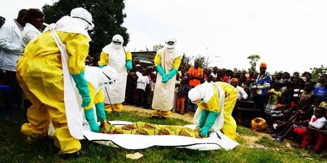 ebola -riposte