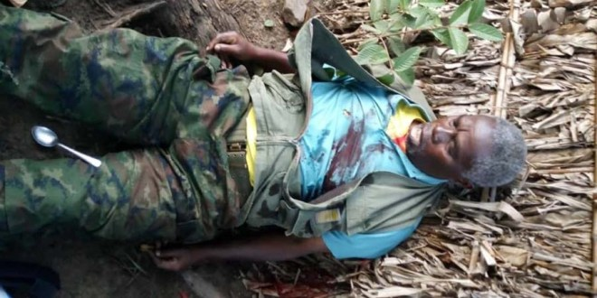 Mudacumura killed in fight with the Congolese army