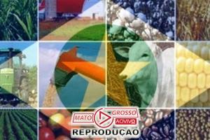 Insatisfeitos com proposta de Mendes que inviabiliza o agronegócio, representantes de entidades apresentam esclarecimentos 78