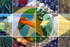 Insatisfeitos com proposta de Mendes que inviabiliza o agronegócio, representantes de entidades apresentam esclarecimentos 82