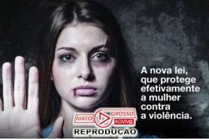 MELHORIAS | Mudanças na Maria da Penha sancionadas por Bolsonaro trarão mais agilidade na punição dos agressores 87