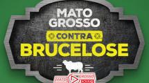 """Alta Floresta recebe Comitê Consultivo da campanha """"Mato Grosso contra Brucelose"""" dia 29 de Julho 152"""