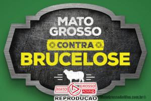 """Alta Floresta recebe Comitê Consultivo da campanha """"Mato Grosso contra Brucelose"""" dia 29 de Julho 66"""