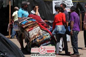 Nova Lei dos Vendedores Ambulantes de Alta Floresta mostra força dos lojistas e corrige desigualdades comerciais 65