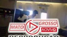 Será verdade que um panda viajou sentado numa poltrona de avião? 215