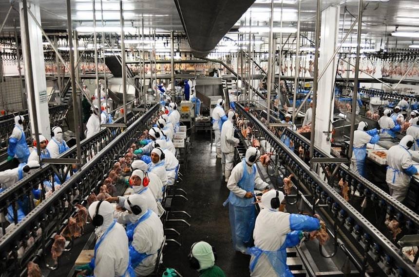 Mesmo operando com margens baixas, indústria frigorífica de Mato Grosso mantém 23 mil empregos