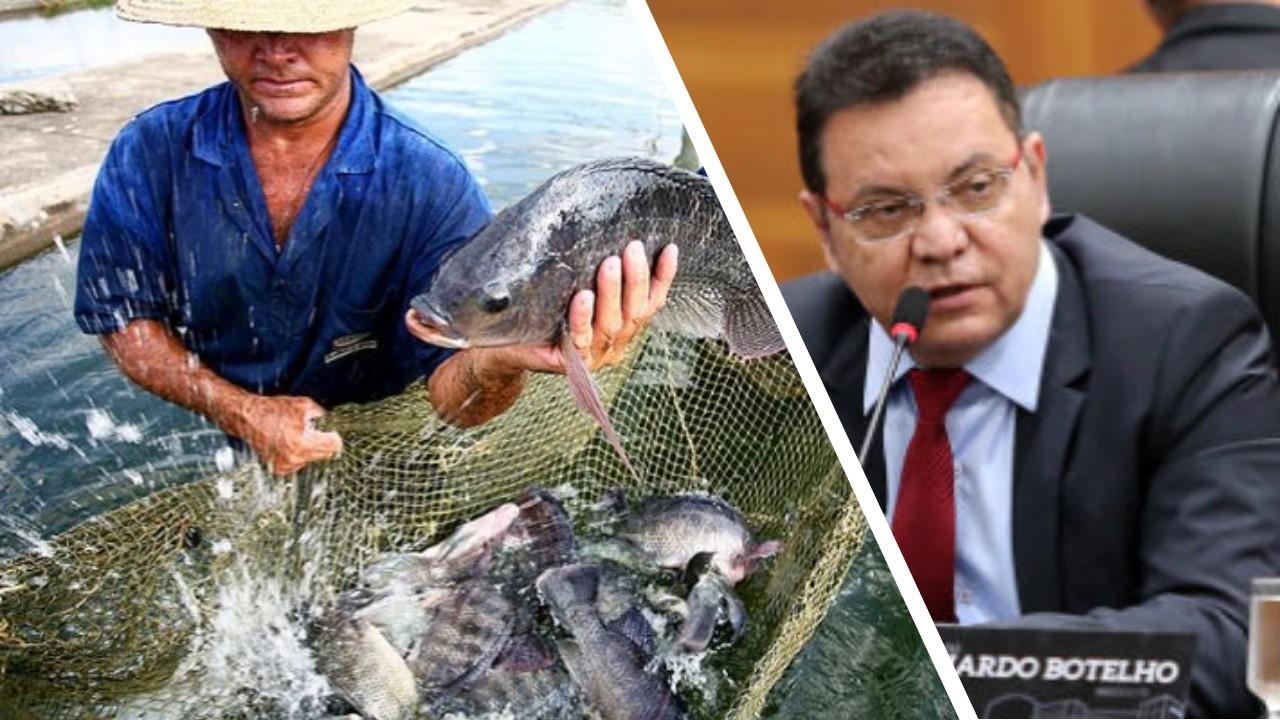 Projeto de lei propõe desburocratizar GTA para produtores de peixe de MT e facilitar regularização fundiária