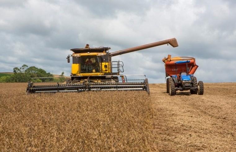 Apesar de processar quase um milhão de toneladas de soja, produção de Mato Grosso tem queda de -1,09% em julho