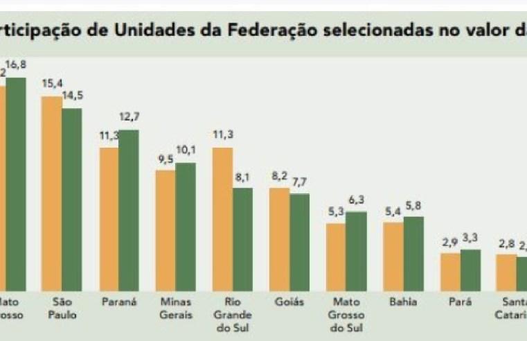 Valor da produção agrícola de MT cresceu 35% em ano de pandemia