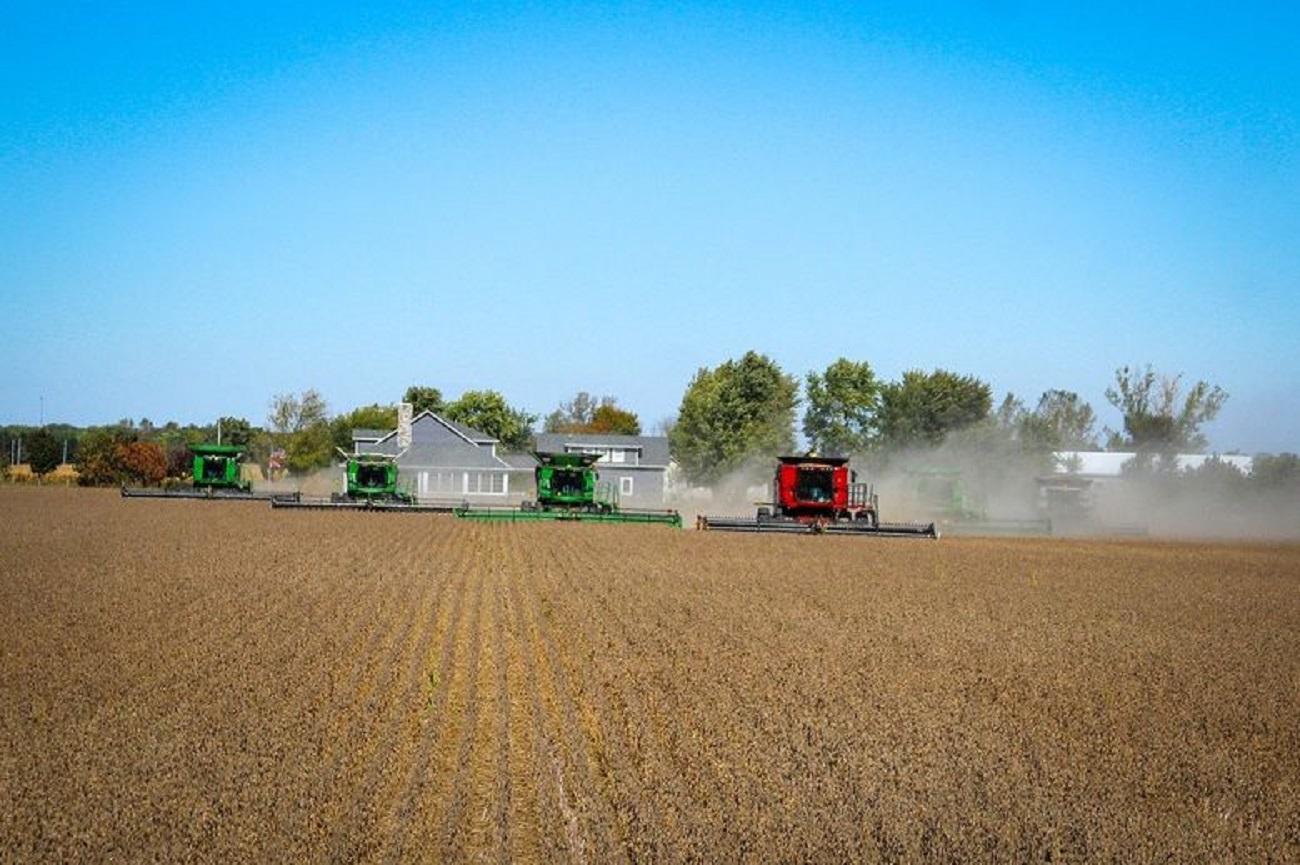 Terra Santa tem sete fazendas em Mato Grosso