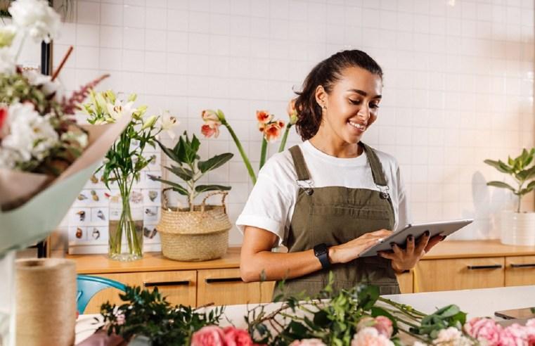 Empresas de pequeno porte representam 79,51% em Mato Grosso