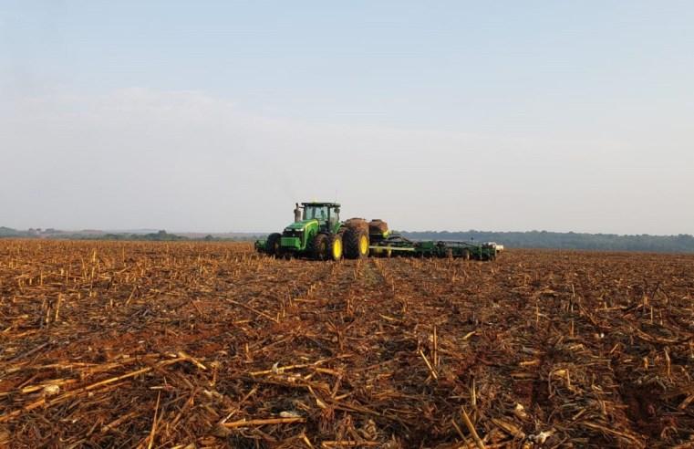 Plantio de soja chega a 4% no País, mas falta de chuvas 'segura' ritmo em MT