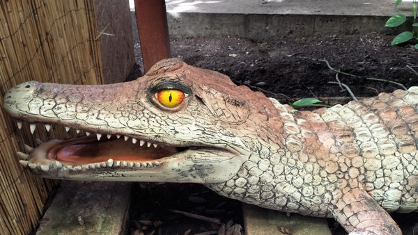 planet crocodile
