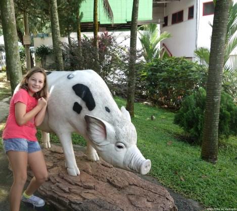 Thean hou cochon
