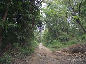 jalan kat malaysia utara