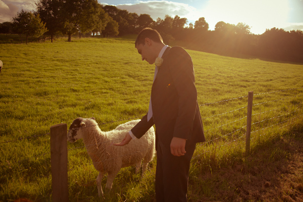 mat-smith-photography-groom-sheep-before-speech-sunset