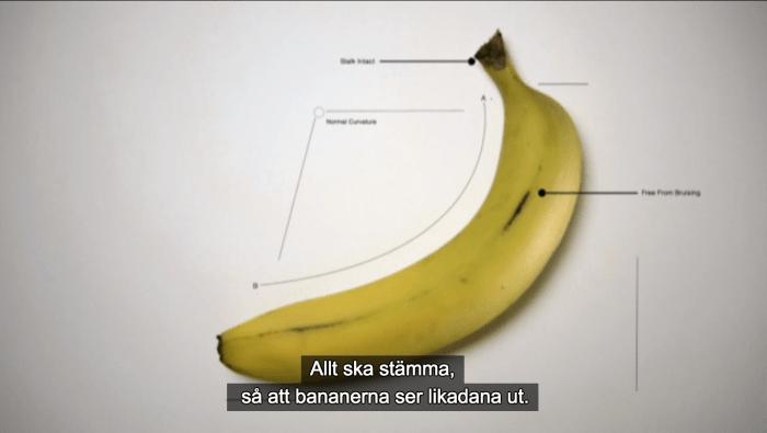 bananperfektion EU