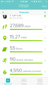 My fitbit stats for the day