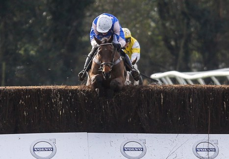 The final fence and one of the support races