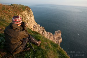 Photographing gannets at Bempton Cliffs