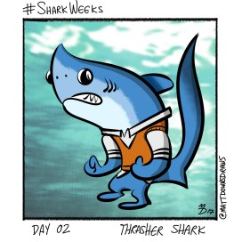 SharkWeeks_Day02