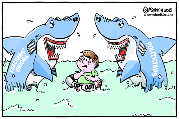 shark-out