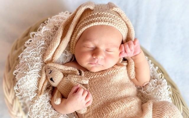 baby-Aivia