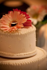 WeddingsEngagements-32