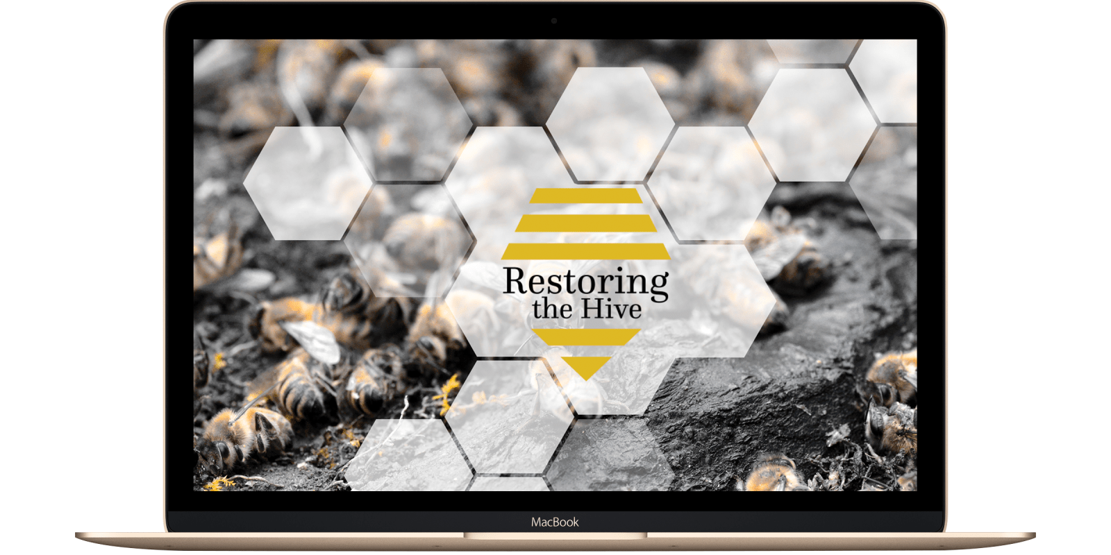 RESTORING THE HIVE