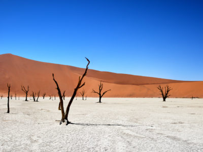 Dead Vlei, Namibia, Africa