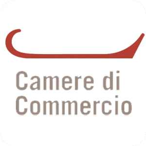 Read more about the article Diritto camerale 2019