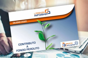 Contributo a Fondo Perduto