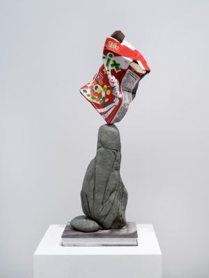 Trix Box Balancing on a Rock with a Book, 2019