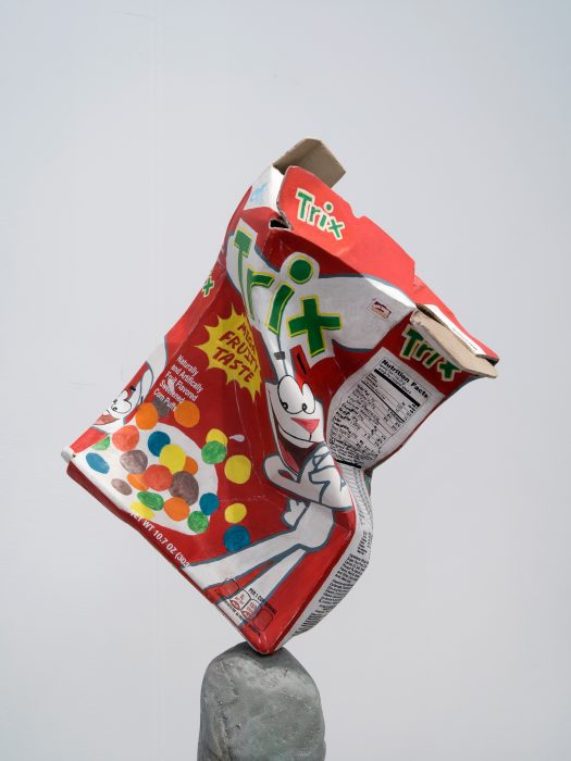 Trix Box Balancing on a Rock with a Book, 2019 Detail