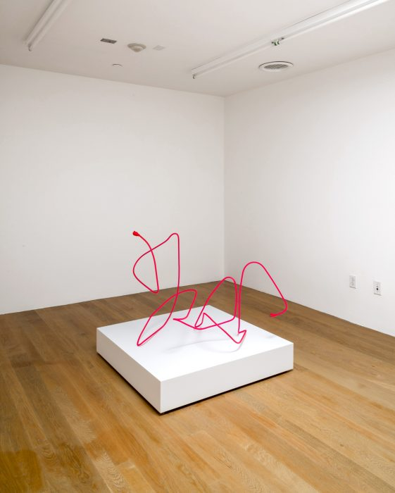 Extension Cord 7 (Free Radical), 2013 Installation view