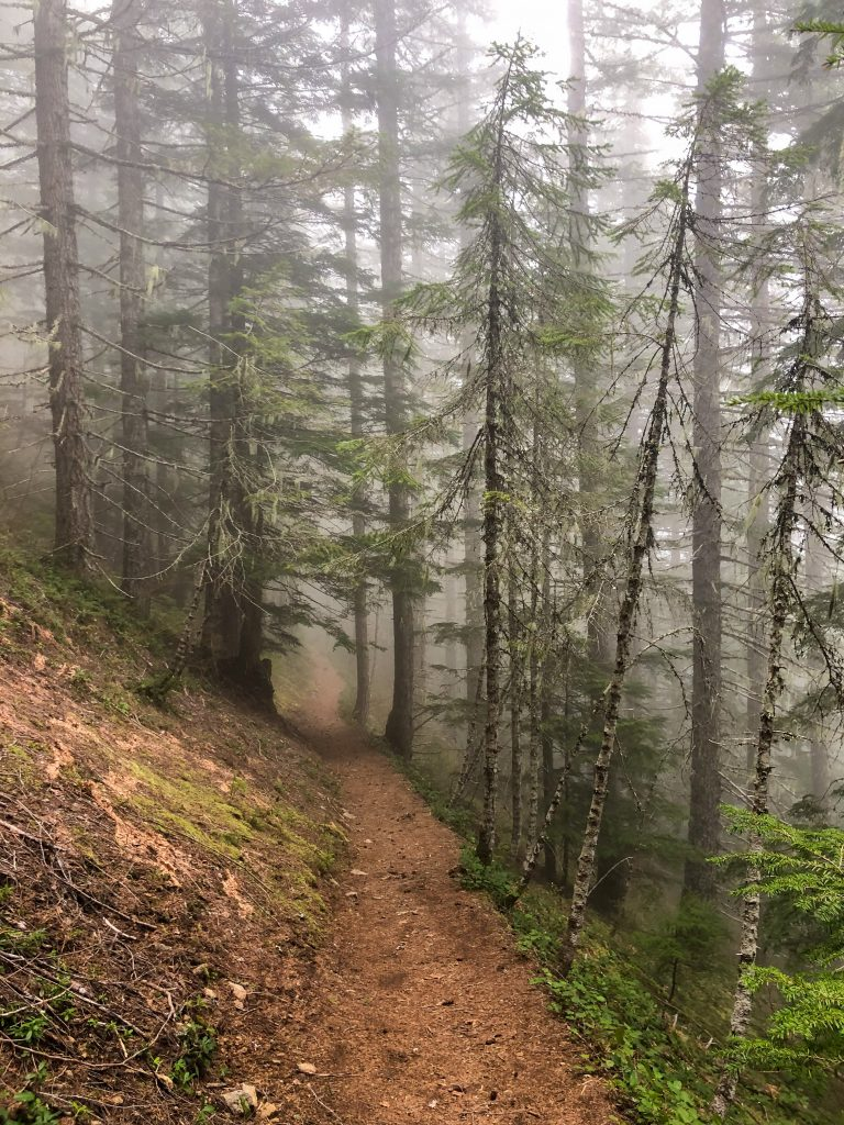 Foggy morning on the Pratt Lake Trail