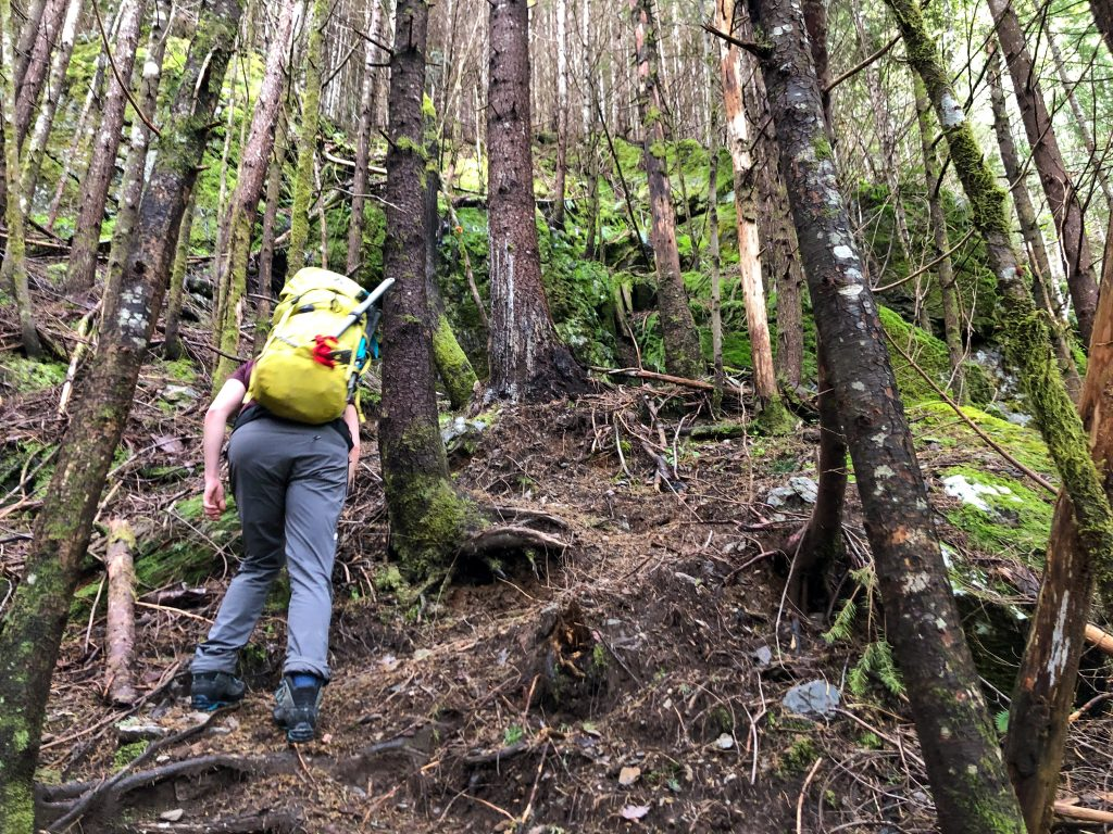 Ascending through the forest to reach the W ridge of Baring.